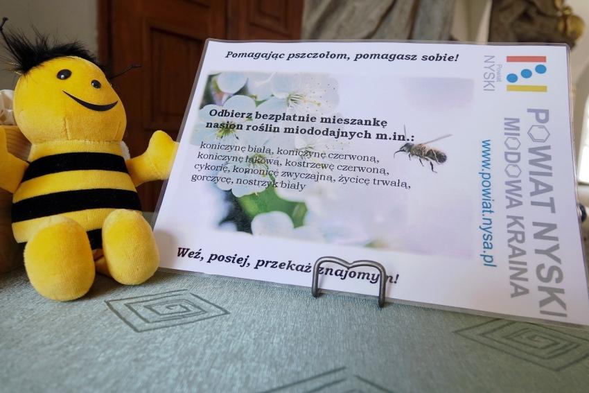 Starostwo po raz kolejny pomaga pszczołom